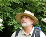 Koos Modderman's picture
